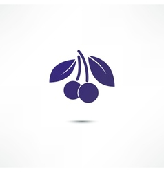 Cherry icon vector