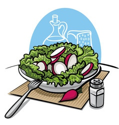 Fresh green salad with radish vector