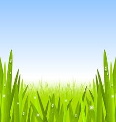 Morning grass copyspace vector