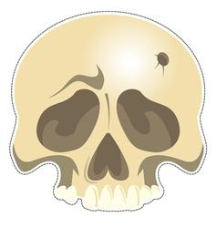 Mask skull vector