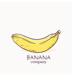 Hand drawn banana vector