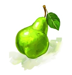 Fruit pear hand drawn vector