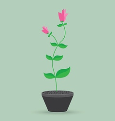 Flower pot isolated background vector