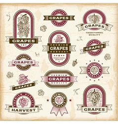 Vintage grapes labels set vector