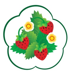 Forest berry vector