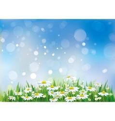 Spring field vector