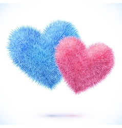 Blue and pink pair of hearts vector