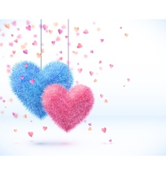 Blue and pink pair of hearts valentines day vector