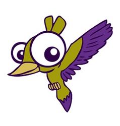 Big eyed bird vector