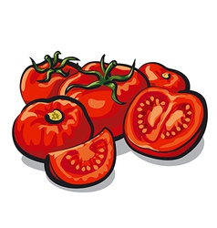 Fresh tomatoes vector