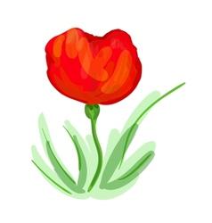Poppy vector