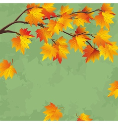 Vintage autumn wallpaper leaf fall background vector