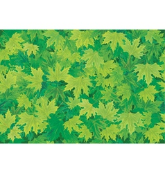 Seamless background of green leaves vector