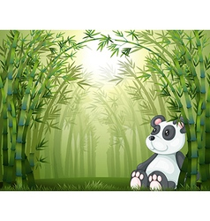 A panda in the bamboo forest vector