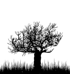 Tree and grass in silhouette are isolated on white vector