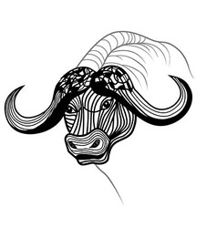 Buffalo bull head animal vector