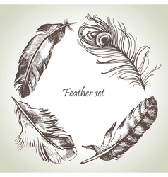 Feather set hand drawn vector