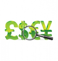 Magnifier and sign of money vector