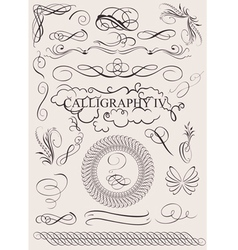 Calligraphic design vector