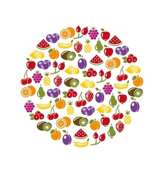 Fruit icons in circle vector