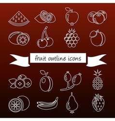 Fruit outline icons vector