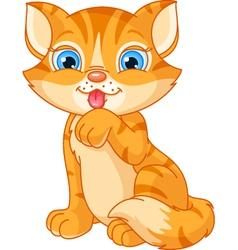 Cute kitten washing itself vector