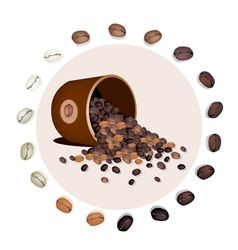 Various kind of coffee beans dropped from a bucket vector