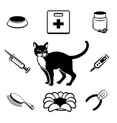 Cat veterinary clinic icons vector