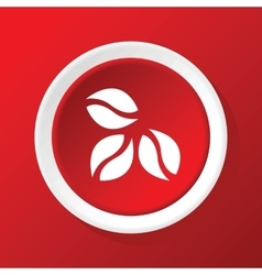 Coffee icon on red vector