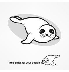 Cute white-coat seal vector