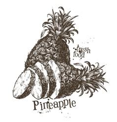 Pineapple logo design template fruit or vector
