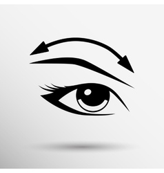Eyelashes and eyebrows eyelash eye vector