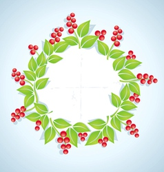 Berry plant vector