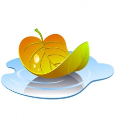 Leaf in puddle vector