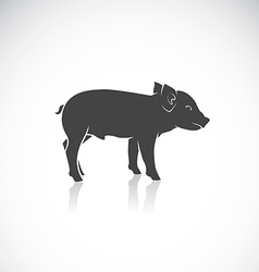 Image of a piglet vector