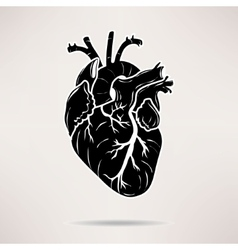 Icon body heart icon on the white background vector
