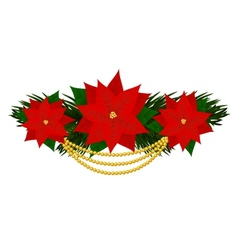 Poinsettia flowers vector