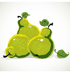 Green-yellow pears vector