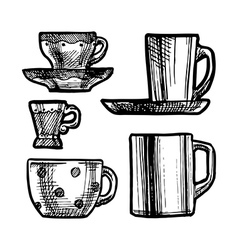 Set of cups vector
