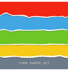 Torn paper set vector