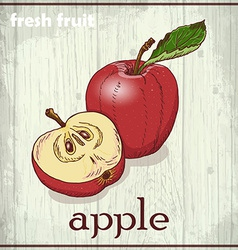 Hand drawing of apple fresh fruit sketch vector