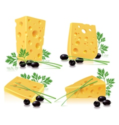 Cheese olives onion parsley vector