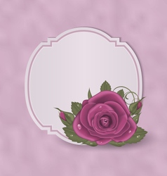 Vintage card with pink roses vector