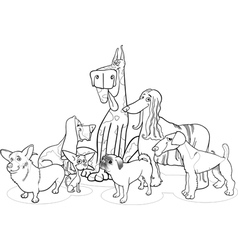 Purebred dogs group cartoon for coloring vector