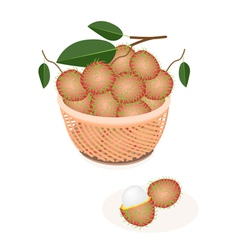 A brown basket of fresh ripe and juicy rambutans vector
