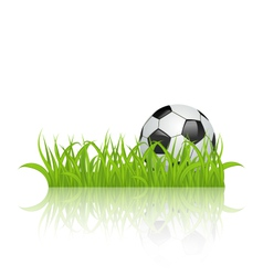 Soccer ball on grass isolated on white background vector