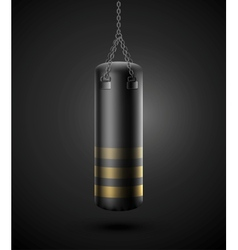 Punching bag vector