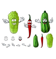 Chili pepper cabbage and zucchini vegetables vector
