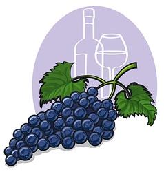 Blue grapes vector