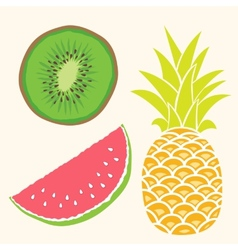 Fruit set mango watermelon pineapple vector